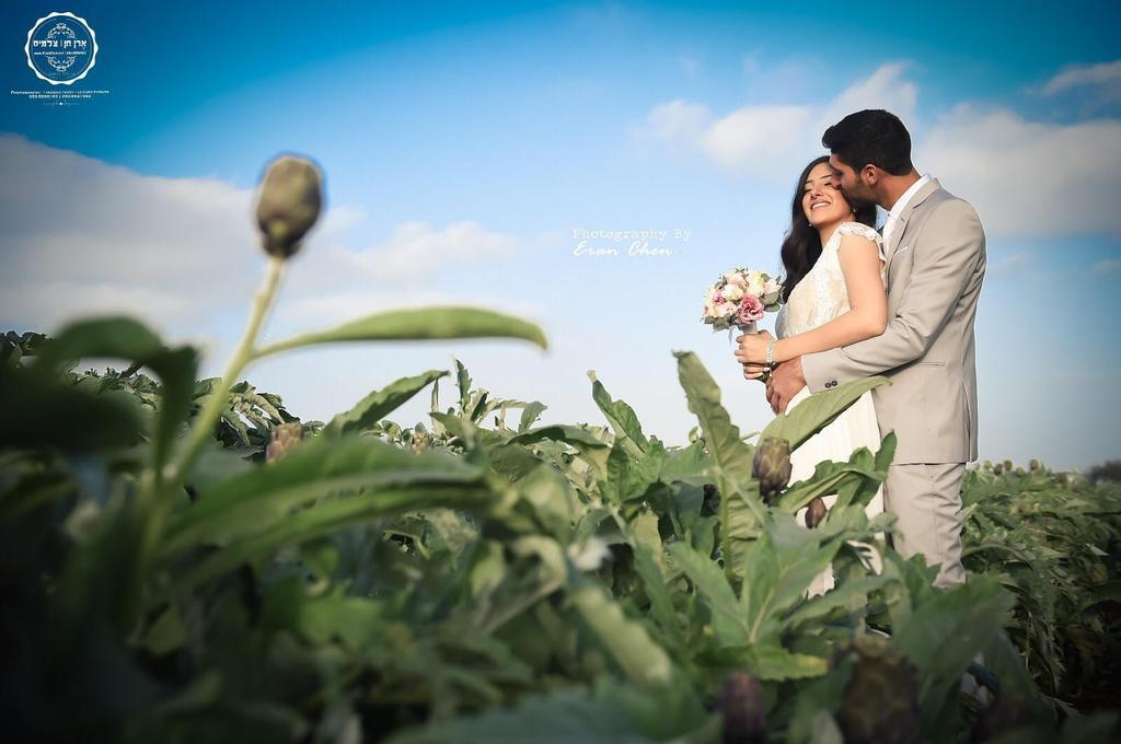 הכל ירוק. שדה בנווה ירק הוד השרון | צילום: ארן חן