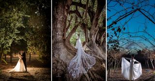 נווה ירק, כפר סבא הירוקה ויער אילנות | צילומים: דניאל מליחי, אריאל אריכא, עידו סקעת