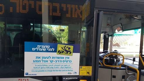 צילום: איתי שיקמן, ynet