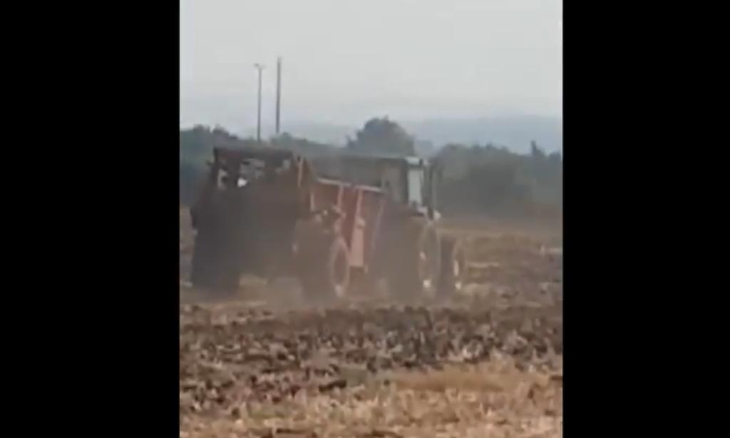 צילום מתוך הסרטון